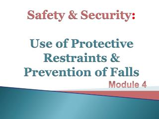 Safety  Security:  Use of Protective Restraints  Prevention of Falls