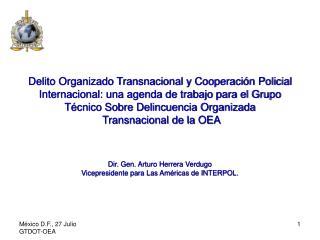 Delito Organizado Transnacional y Cooperaci n Policial Internacional: una agenda de trabajo para el Grupo T cnico Sobre