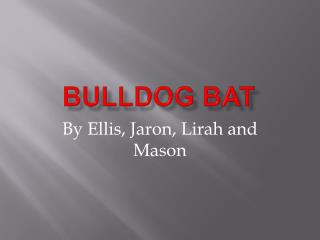 Bulldog Bat