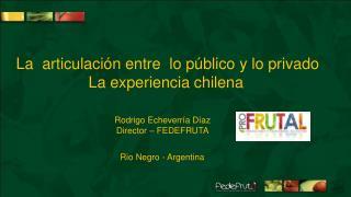 La  articulaci n entre  lo p blico y lo privado La experiencia chilena