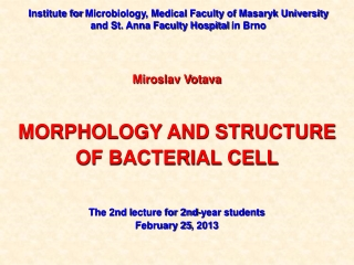 Bacteriology lecture 10- Medical microbiology continued
