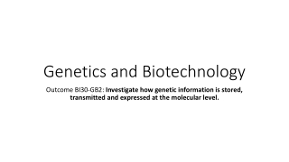 Protein Synthesis or Gene Expression: Outlining the Processes of Transcription and Translation