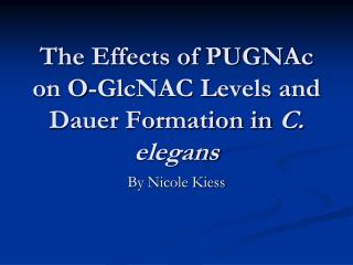 The Effects of PUGNAc on O-GlcNAC Levels and Dauer Formation in C. elegans