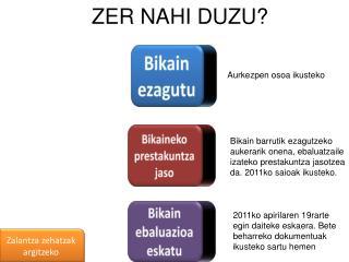ZER NAHI DUZU