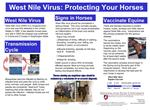West Nile Virus: Protecting Your Horses