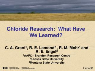 Chloride Research:  What Have We Learned
