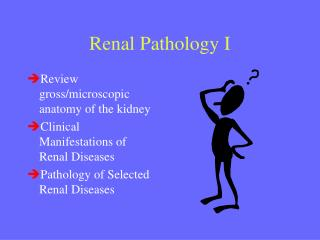 Renal Pathology I
