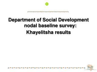 Department of Social Development nodal baseline survey: Khayelitsha results