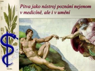 Pitva jako n stroj pozn n  nejenom v medic ne, ale i v umen