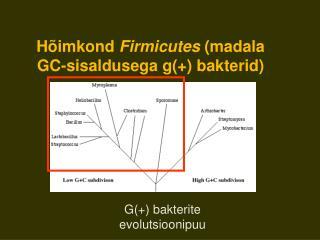 H imkond Firmicutes madala GC-sisaldusega g bakterid