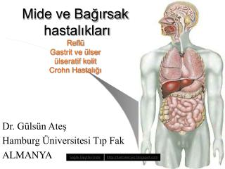 Mide ve Bagirsak  hastaliklari Refl  Gastrit ve  lser  lseratif kolit Crohn Hastaligi