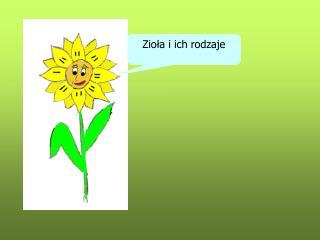 Ziola i ich rodzaje