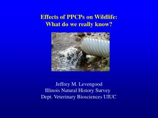 Effects of PPCPs on Wildlife: What do we really know