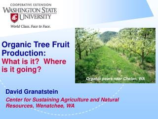 Organic Tree Fruit Production: What is it  Where is it going