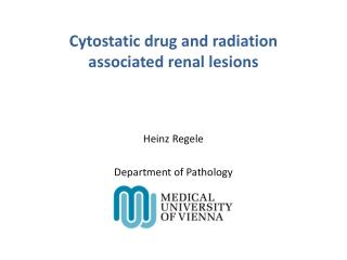 Cytostatic drug and radiation associated renal lesions