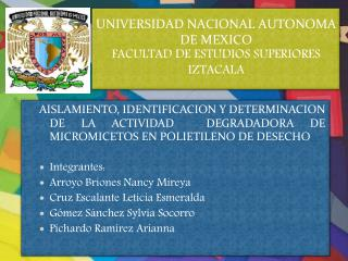 UNIVERSIDAD NACIONAL AUTONOMA DE MEXICO FACULTAD DE ESTUDIOS SUPERIORES IZTACALA