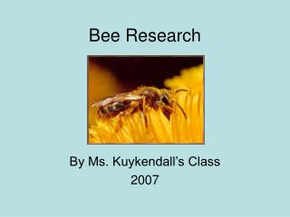 Bee Research