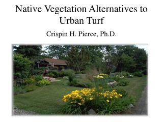 Native Vegetation Alternatives to Urban Turf