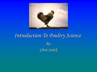 Introduction To Poultry Science