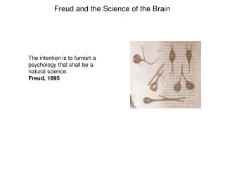 The intention is to furnish a psychology that shall be a natural science. Freud, 1895