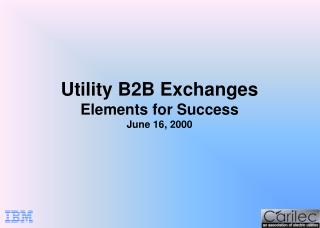 Utility B2B Exchanges Elements for Success June 16, 2000
