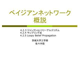 4.2.3           4.2.4           4.2.5 Loopy Belief Propagation