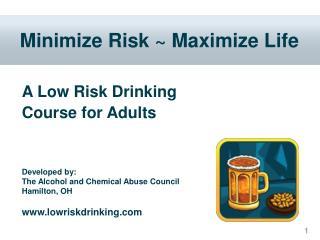 Minimize Risk  Maximize Life