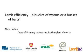 Lamb efficiency   a bucket of worms or a bucket of bait  Nick Linden    Dept of Primary Industries, Rutherglen, Victoria