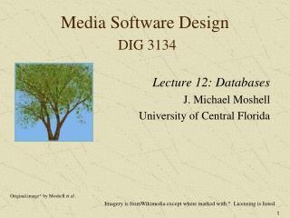 Media Software Design  DIG 3134