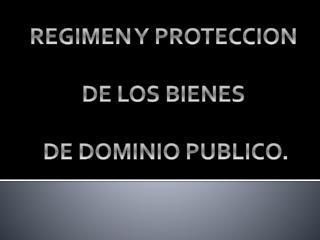 REGIMEN Y PROTECCION   DE LOS BIENES    DE DOMINIO PUBLICO.
