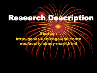 Abney Associates - Research Description