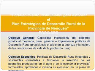 Fortalecimiento Institucional para elaborar el Plan Estrat gico de Desarrollo Rural de la Provincia de Neuqu n  PROINDE