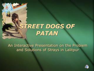 STREET DOGS OF PATAN