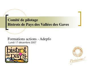 Comit  de pilotage Bistrots de Pays des Vall es des Gaves     Formations actions - Adepfo