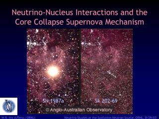 Neutrino-Nucleus Interactions and the Core Collapse Supernova Mechanism