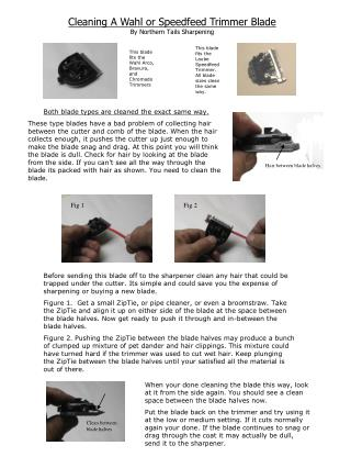 Cleaning A Wahl or Speedfeed Trimmer Blade By Northern Tails Sharpening