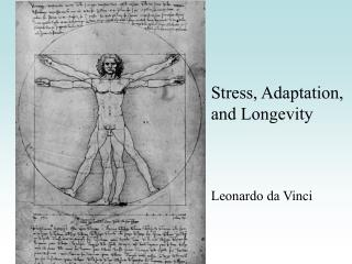 Stress, Adaptation, and Longevity    Leonardo da Vinci