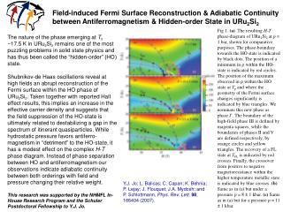 Field-induced Fermi Surface Reconstruction  Adiabatic Continuity between Antiferromagnetism  Hidden-order State in URu2S