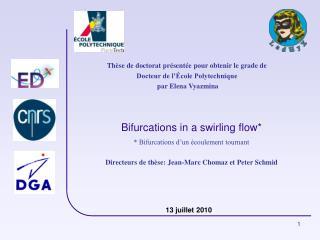 Bifurcations in a swirling flow