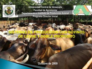Universidad Central de Venezuela Facultad de Agronom a Departamento e Instituto de Producci n Animal Programa Director I