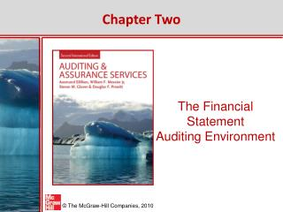 The Financial  Statement Auditing Environment