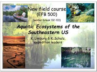 New field course EFB 500 winter break  02- 03