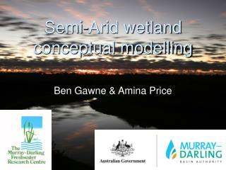 Semi-Arid wetland conceptual modelling
