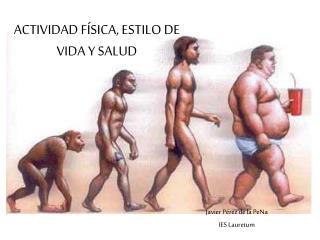 ACTIVIDAD F SICA, ESTILO DE VIDA Y SALUD