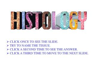 CLICK ONCE TO SEE THE SLIDE.  TRY TO NAME THE TISSUE.  CLICK A SECOND TIME TO SEE THE ANSWER.  CLICK A THIRD TIME TO MOV