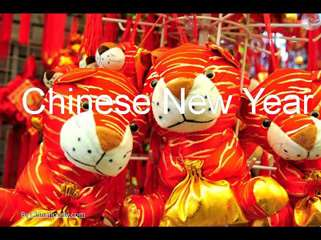 Chinese New Year Photos