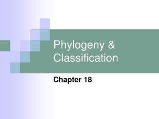 Phylogeny  Classification