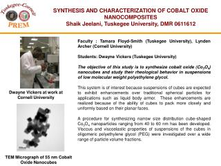 SYNTHESIS AND CHARACTERIZATION OF COBALT OXIDE NANOCOMPOSITES Shaik Jeelani, Tuskegee University, DMR 0611612