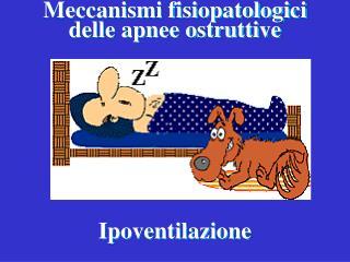 Meccanismi fisiopatologici  delle apnee ostruttive
