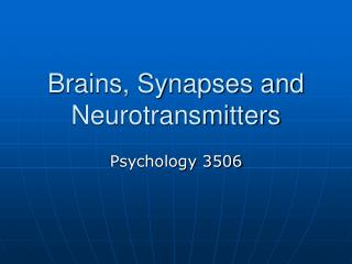 Brains, Synapses and Neurotransmitters
